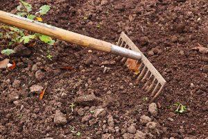 Die Gartenarbeit im Frühjahr ist sehr wichtig